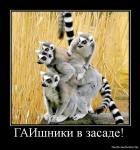 1272439244 210512 Gaishniki-v-zasade 1